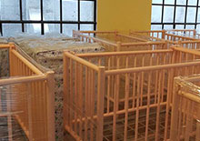New Baby Cribs for Casa Jackson